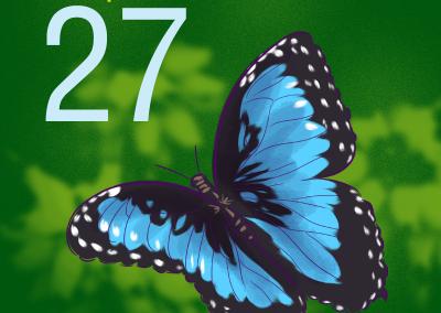 27-Mariposas