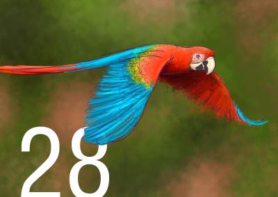 28-Biodiversidad