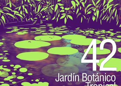 42-Jardin-Botanico-Tropical-Amazonico