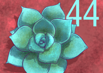 44-Plantas