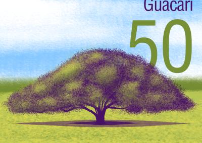 50-Arbol-Caucho-Guacari