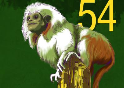 54-Primates