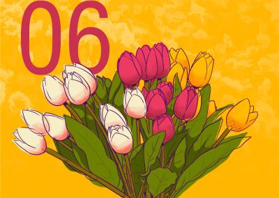 6 flores