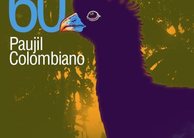 60-Paujil-Colombiano