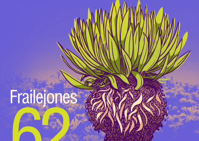 62-Frailejones