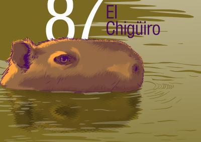 87chiguiro