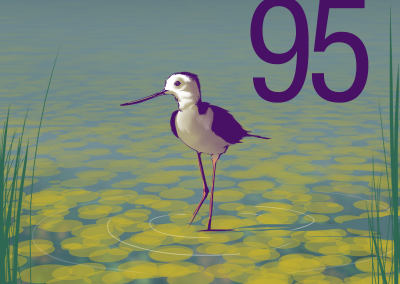 95cienaga