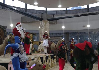 Navidad-palatino-8