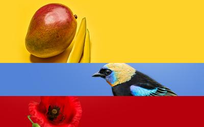 Colombia, mi país