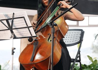 Show-de-violines-v8